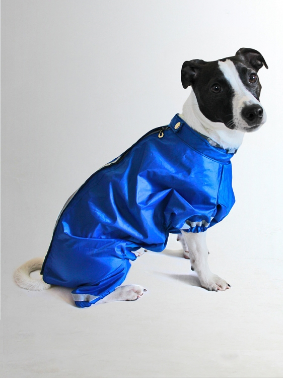 Дождевик для собак Леонардо